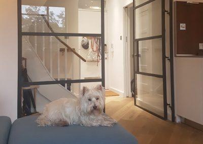 screen-house-refurbishment-north-london-builders-urban-design-build
